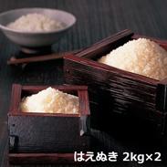 特別栽培米はえぬき 「和久栄米」 〔はえぬき、2�s×2〕