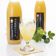 ジュース3本セット 株式会社あいなんマザーズ 愛媛県 愛南町産の希少な柑橘、河内晩柑ストレート果汁100%使用