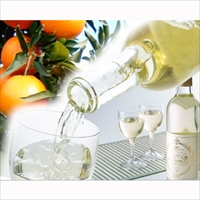 みかんワインKiyomiとケーキセット 〔みかんワインKiyomi360ml、みかんワインケーキ約350g〕 広島県 ワイン 洋菓子 瀬戸内土産 きたたに