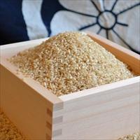 菊池掛け干し清流米 にこまる 玄米 〔5kg〕 熊本県 無農薬の玄米 九州阿蘇 原川農園