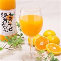 クリエイト伊方 愛媛県特産 ストレート果汁100%ジュース うまいがぜ伊方みかん 3本セット〔720ml×3〕