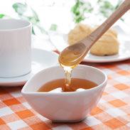 蜂蜜(550g2本セット) 森下友蜂堂 富山県 皇室献上品。トチの花を蜜源とする芳醇な香りと甘みのある蜂蜜です