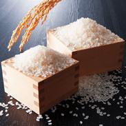 こしひかり食べくらべセットB 栗原精穀 埼玉県 新潟と山形県川西町の1等米「こしひかり」をこだわりの精米技術で仕上げました