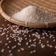 真田のコシヒカリ小松姫(白米) 金井農園 群馬県 真田用水の雪どけ水使用。減化学肥料栽培の国産米トップ水準の美味しさ