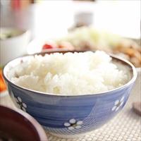 新潟米2種食べ比べセット 〔雪蔵仕込み新潟県産新之助・こしひかり各2kg〕 米 新潟 吉兆楽