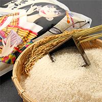 特別栽培米 秋田県横手市産あきたこまち〔5kg×2袋〕