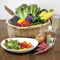 おいしいお野菜便葉な果菜ボックス〔10品程度〕