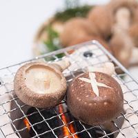 丹波篠山産 肉厚濃厚ジクまで美味しい椎茸詰合せ〔生椎茸・椎茸のつくだ煮・乾燥しいたけ・乾きくらげ〕