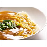 さぬきのレンチン カレーうどん 〔(麺180g・カレースープ)×4〕 うどん 麺類