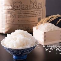 きたえちご米店 子どもの元気を作るごはん 農家直送おいしいコシヒカリ 新潟 せいろうこそだて米〔10kg〕