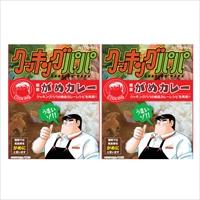 クッキングパパの絶品カレー 福岡ご当地グルメ レトルトカレー クッキングパパがめカレー 2個〔200g×2〕