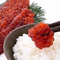 特上 紅鮭筋子醤油漬け 1kg