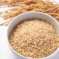 令和元年産 特別栽培米 あきたこまち 玄米 〔5kg〕 秋田県 米 佐々木米穀店