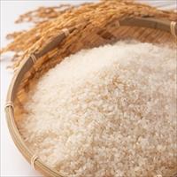 令和元年産 特別栽培米 あきたこまち 精米 〔5kg〕 秋田県 米 佐々木米穀店