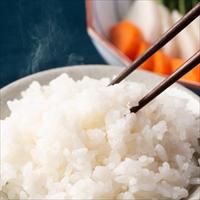 山形県南陽産特別栽培米はえぬき 〔5kg〕 山形県 お米 しまさき農園
