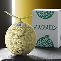 静岡県産クラウンマスクメロン 1玉 〔1.2kg〕 フルーツ FCC