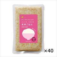 ケース 玄米ごはん プレーン レトルトご飯 40個 〔160g×40〕 東京都 無添加 レトルトごはん チャヤ マクロビオティックス