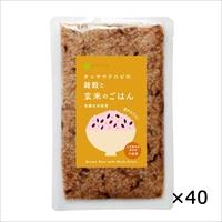 ケース 雑穀入り玄米ごはん レトルトご飯 40個 〔160g×40〕 東京都 無添加 レトルトごはん チャヤ マクロビオティックス