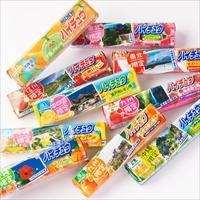 ご当地ハイチュウ 10種 セット 〔10種各12粒×各5本〕 地域限定 お菓子 森永製菓