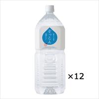 四国カルスト天然水 ぞっこん 2L 2ケース 〔2L×12〕 水 ミネラルウォーター 愛媛 ぞっこん四国
