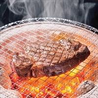 佐賀牛 ヒレステーキ 〔100g×4、ソース15g×4、ペッパー2g×4〕 牛肉 冷凍