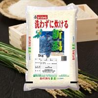 無洗米 新潟県産コシヒカリ〔5kg〕