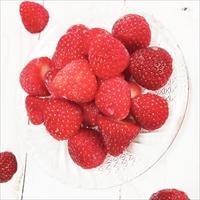 冷凍いちご 完熟苺 〔500g×4〕 冷凍 フルーツ いちご 国産 宮城 イグナルファーム