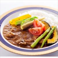 健康カレー お試しセット A ノンオイル野菜カレー 〔180g×2〕 カレー 惣菜