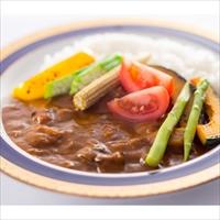 健康カレー 減塩ビーフカレー 6食 〔180g×6〕 カレー 惣菜
