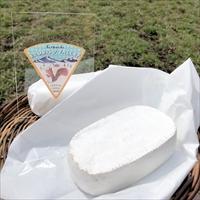 エゾリスチーズ コバン 4個 〔150g×4〕 チーズ 北海道 広内エゾリスの谷チーズ社