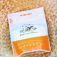 エゾリスチーズ フロマージュブラン 6個 〔300g×6〕 チーズ 北海道 広内エゾリスの谷チーズ社