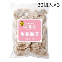 生姜餃子 30個入3袋 〔(18g×30)×3〕 餃子 惣菜 栃木 宇都宮餃子とんきっき フタバ食品
