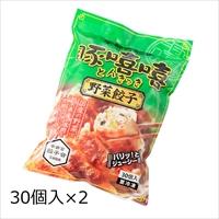 野菜餃子 30個入2袋 〔(18g×30)×2〕 餃子 惣菜 栃木 宇都宮餃子とんきっき フタバ食品