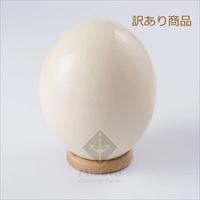 国産 ダチョウ食卵 訳あり(小さめ) 〔1個(1.2kg〜1.5kg程度)〕 卵 埼玉 美里オーストリッチファーム